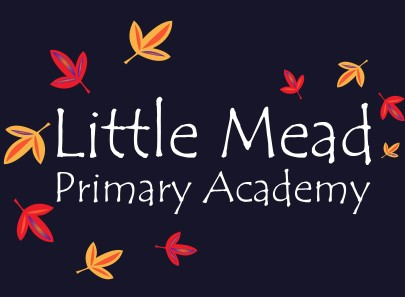 Little Mead Primary School